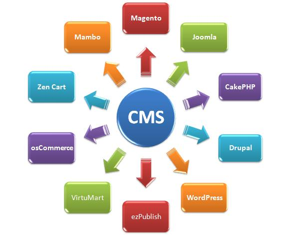 Content Management System Software Information Technology