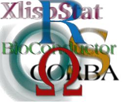 dsc_stat_computing